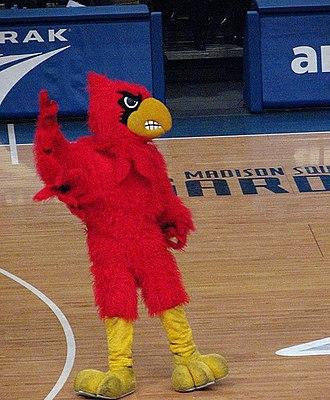 Cardinal Bird (mascot) - The Cardinal at Madison Square Garden.