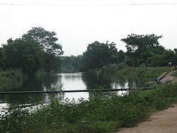 Lower Bhavani Canal near Perundurai.