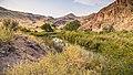 Lower Owyhee Canyon (43782417664).jpg