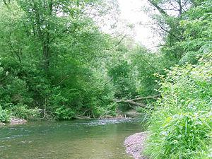 Lučina (river) - Lučina in Dolní Bludovice