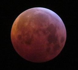 Lunar eclipse of 2019 January 21, Belgium