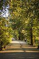 Magnuson Park (21060442493).jpg