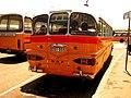 Malta Bus EBY 555.jpg