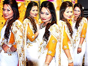 Miss Nepal - Image: Malvika Subba montage photo