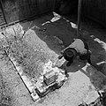 Man legt wensbriefje bij het graf van de wonderrabbijn van Gerrer, Bestanddeelnr 255-0423.jpg