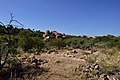 Mapungubwe, Limpopo, South Africa (20535188782).jpg