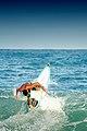 Maracaípe surfing 03.jpg