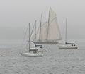 Mariette tacking thru the mist off Fairlie (2600105279).jpg