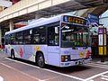 Matsudo Shin-Keisei Bus 3003.jpg