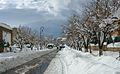 Medea sous la neige 2.jpg