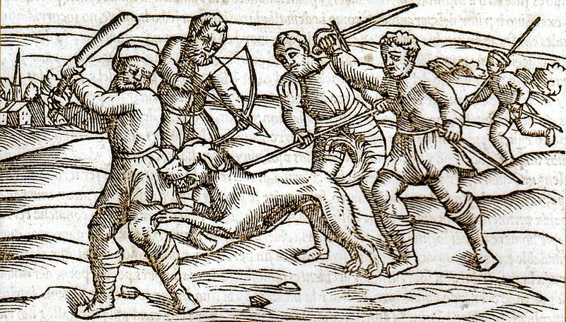 File:Middle Ages rabid dog.jpg