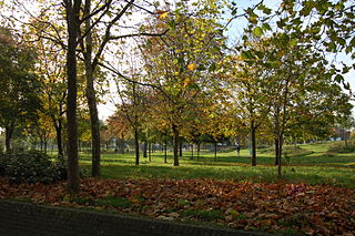 Parks and open spaces in the London Borough of Tower Hamlets