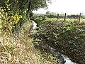 Mill stream - geograph.org.uk - 585207.jpg