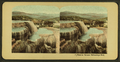 Minerva Terrace, Yellowstone Park, from Robert N. Dennis collection of stereoscopic views.png