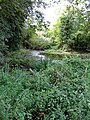 Moat near Watton at Stone - geograph.org.uk - 229022.jpg