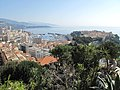 Monaco from the top of the exotic garden.jpg