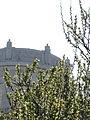 Monumento ai Caduti ed i fiori del Passetto.JPG