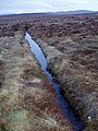 Moorland ditch - geograph.org.uk - 1220030.jpg