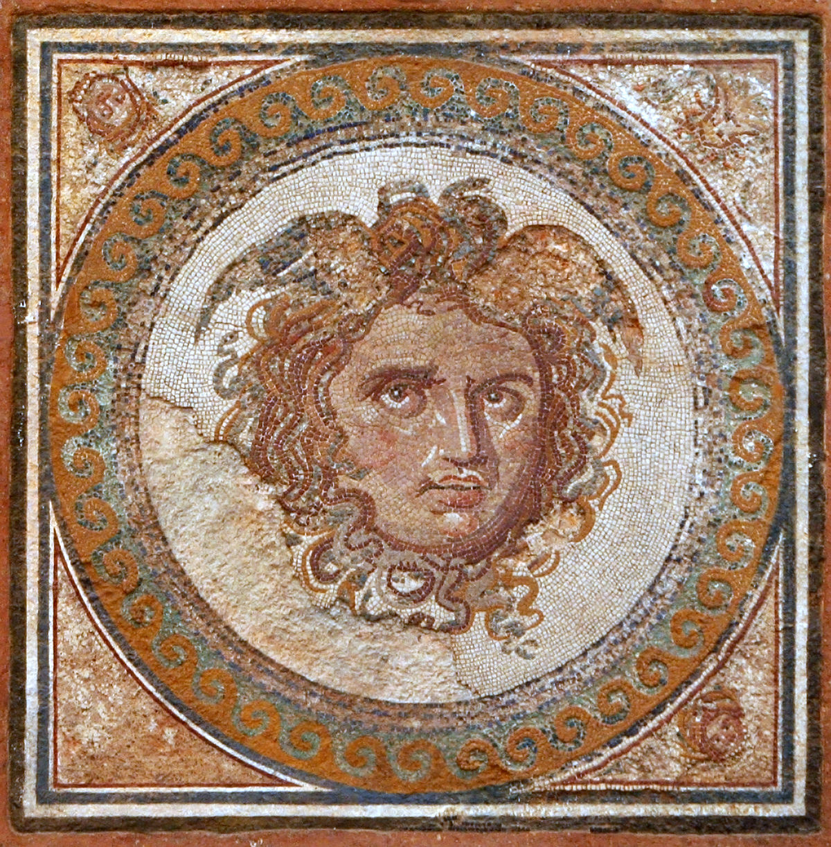 Mosaic de la Medusa2.JPG