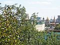 Mosca-Cremlino 27.jpg