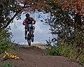 Mountain bike jumping on trail.jpg
