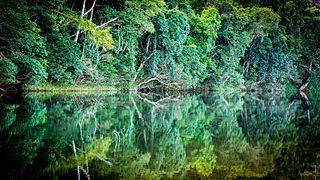 Goldsborough, Queensland Suburb of Cairns Region, Queensland, Australia