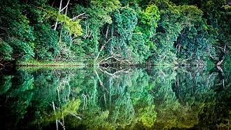 Goldsborough, Queensland - Mulgrave River at Goldsborough Valley