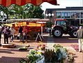 Munster - Marktstand, Rathaus.jpg