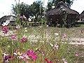 Museum of Folk Architecture and Life of Ukraine - panoramio (7).jpg