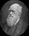 NIE 1905 Darwin Charles.png