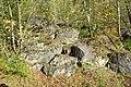 NSG Steinbruch Holzmühle (102).jpg