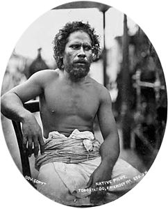 Native Pilot, Tongataboo, Friendly Islands, 1874.jpg