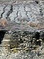 New Providence Shale over New Albany Shale (Mississippian over Devonian; MacDonald Knob Outcrop, Bullitt County, Kentucky, USA) 2 (45178100994).jpg