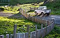 New Zealand - Rural landscape - 9998.jpg