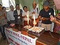 Newiki 12 cake party02.JPG