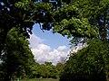 Newsham Park 027.jpg