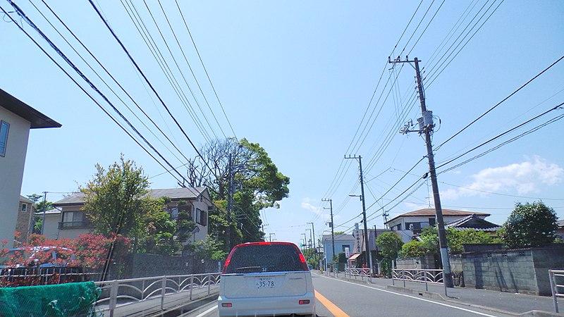 File:Nishikoiso, Oiso, Naka District, Kanagawa Prefecture 255-0005, Japan - panoramio (7).jpg