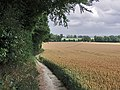 North Downs Way near Eastwell Park - geograph.org.uk - 1409491.jpg