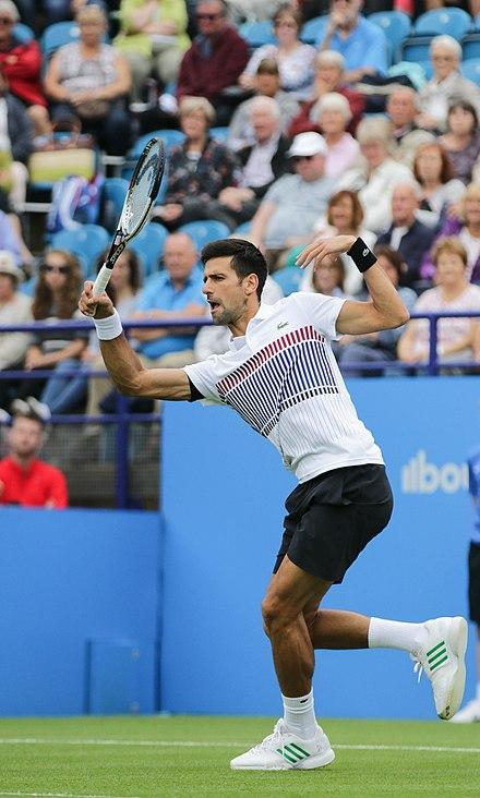 Novak Djokovic Il Punto Vincente Pdf