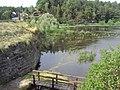 Novozámecký rybník 4.JPG