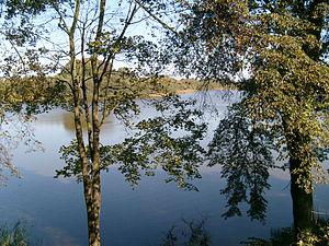 Nowy Jasiniec - Image: Nowy Jasiniec lake