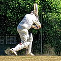 Nuthurst CC v. Henfield CC at Mannings Heath, West Sussex, England 070.jpg