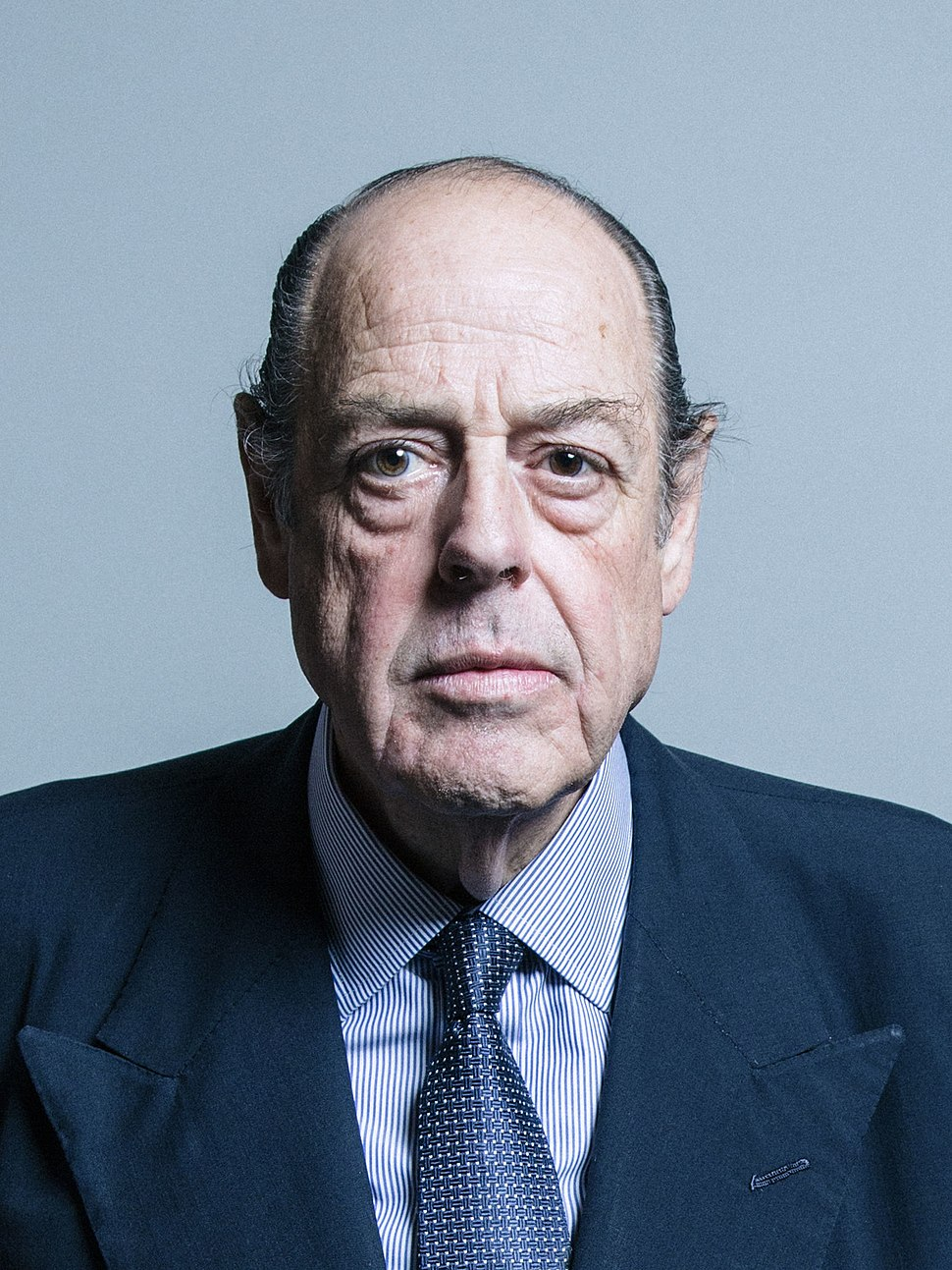 Official portrait of Sir Nicholas Soames crop 2