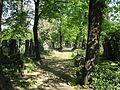 Olšanské hřbitovy 0290.JPG