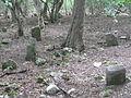 Old Crimean Tatar cemetery - Aylyanma village (Crimea, Ukraine).JPG