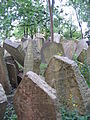 Old Jewish Cemetery, Prague 020.jpg