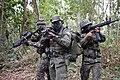 Operação Amazônia 2014 (15398847820).jpg