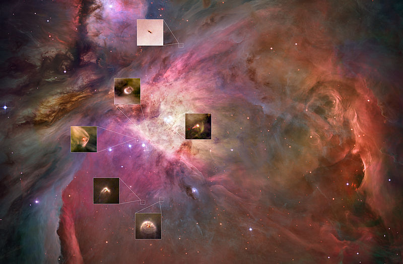 Orion Nebula with proplyd highlights (captured by the Hubble Space Telescope).jpg