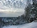 Ostrovsky District, Kostroma Oblast, Russia - panoramio - Andris Malygin (5).jpg
