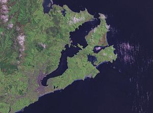 Otago Harbour - A NASA satellite photo of Otago Harbour